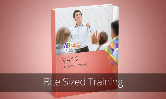 YB12 Bite Sized Training